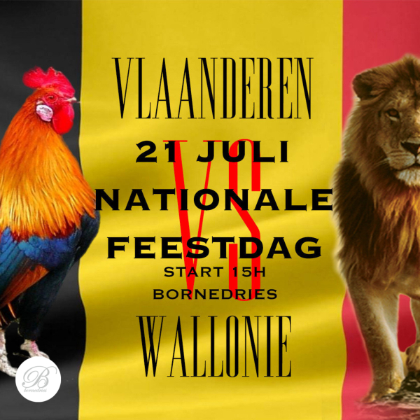 Nationale Feestdag: Vlaanderen vs. Wallonië pool + foam party!